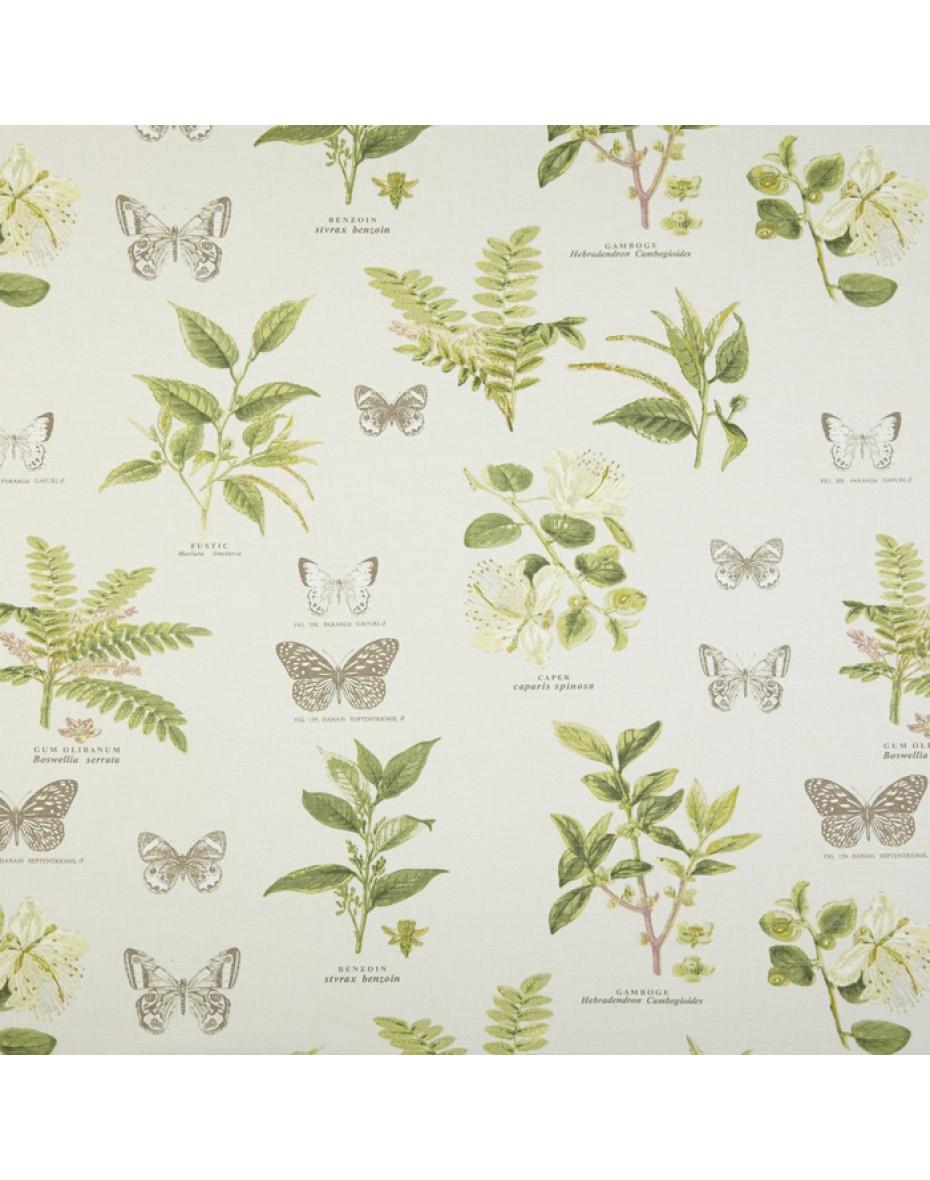 Látka Botany - Acacia